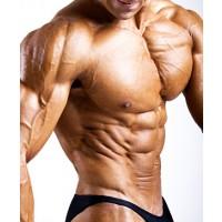 Как быстро сбросить вес: применение L-карнитина эффективно уничтожает жир и холестерин